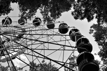 Ferris wheel among tree branches