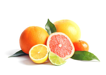 Citrus fruits on white background Fototapete