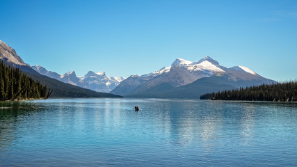 Maligne Lake- the largest alpine lake  in Jasper National Park, Alberta, Canada.