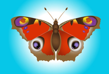 realistic vector butterfly on background