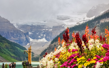 Colorful flowers with the glacier and Lake Louise in the background at Lake Louise, Banf National Park, Alberta, Canada.