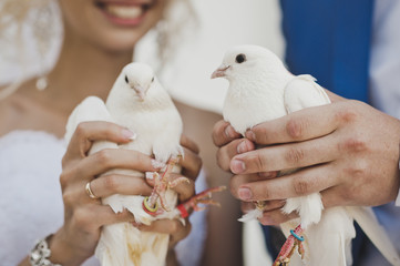 The custom of releasing doves at the ceremony 7856.