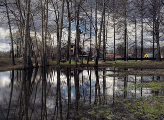 Reflection in a pond. Moscow.