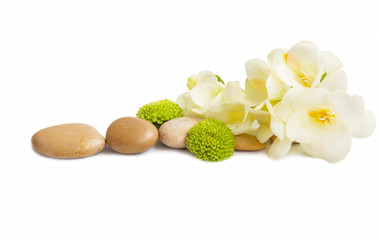 Spa flowers and stones isolated