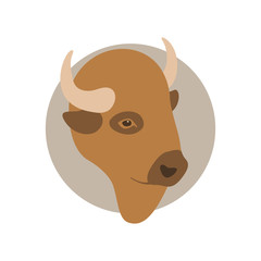 buffalo head  vector illustration Flat style