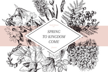 Vector hand drawn spring blossoms poster. Engraved botanical art. Mimosa, hyacinth, magnolia, rhododendron, hydrangea.