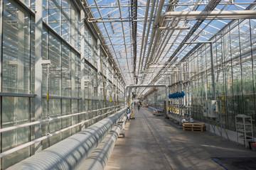Corridor in the greenhouse