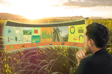 Wall Mural - iot,internet of things, agriculture concepts,farmer use augmented reality on screen display to manage, analysis and keep data in the field or farm
