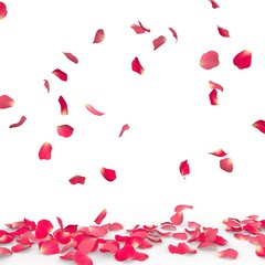 Rose petals fall to the floor