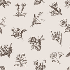 pattern of the different flowers bunches