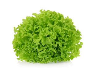 Green oak lettuce isolated on white background.