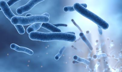 Legionella bacteria in water