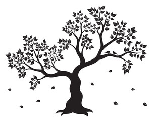 Vector illustration of tree with leaves and two birds in black colour on white background. Wall sticker.