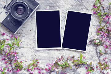 vintage retro camera with blank photo frames and branches of cherry blossoming