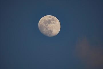 Mond am Abend