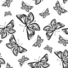 Seamless pattern with butterflies on white background. Vector illustration.