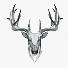 deer particle