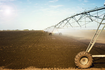 Wall Mural - Agriculture. Field landscape with irrigation system. Watering crops. Machinery and equipment. Agronomy.