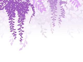 藤の花 ふじ フジ 和柄
