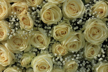 white rose and gypsophila bouquet