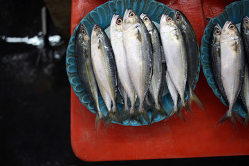 Fresh chub mackerels fish on a plate at local market counter for sale at the traditional wet market in Malaysia.
