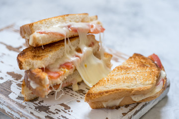 toast grilled with cheese and tomatoes