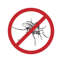 Drawn mosquito in crossed out circle. Vector illustration.