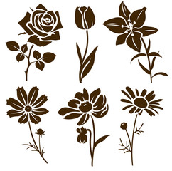 Set of decorative flower silhouette. Vector flower icon.
