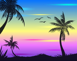 Summer tropical backgrounds set with palms, sky and sunset