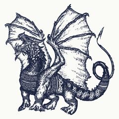 Dragon tattoo art. Symbol force, fantasy, fairy tale. Strong dragon with celtic ornament t-shirt design