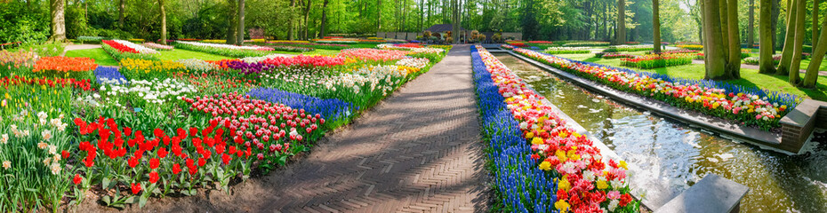 Panorama of several flowerbeds with tulips and other flowers