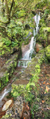 25 fountains levada tracking path with waterfall. Madeira island, Portugal
