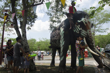 Thai people and foreigner travelers playing and splashing water with elephants and people in Songkran Festival at Ayutthaya