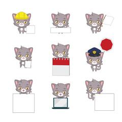 Cute gray cat functional poses