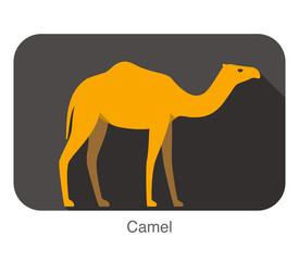Camel walking on the ground, flat icon, Animal series