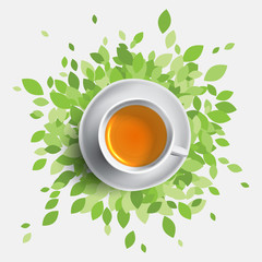 Black tea cup vector illustration, concept with green leafes. Health ideas.