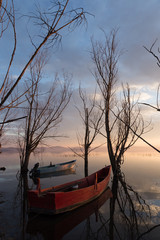Two little red and blue fishing boats in a lake at sunset, with beautiful trees and clouds reflections all around