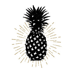 Hand drawn icon with textured pineapple vector illustration.