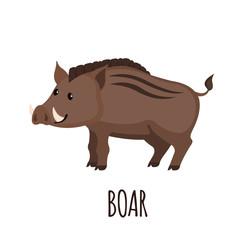 Cute wild Boar in flat style.