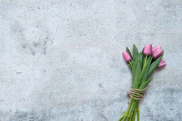 Fototapete - Pink tulips