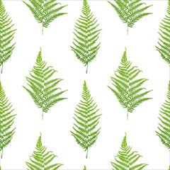Fern seamless pattern. Vector illustration