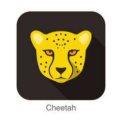 Cheetah, Cat breed face cartoon flat icon design