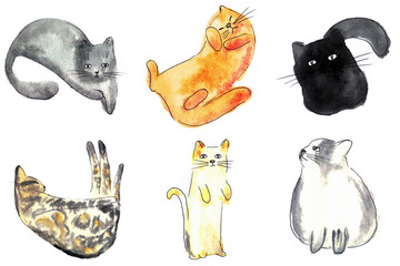 Warercolor brush cats illustration set on white background