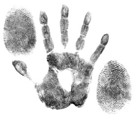 hand and finger prints for identification