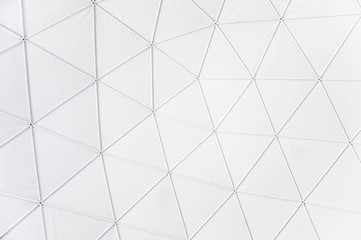 geodesic background
