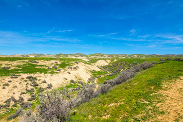 Wallace Creek, Carrizo Plain National Monument, San Andreas Fault (boundary between the Pacific Plate and the North American Plate), California USA, North America