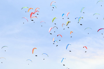 many paragliders on the sky