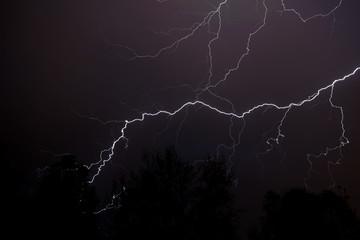 Lightning Above Woods