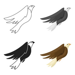 American eagle icon in cartoon style isolated on white background. Patriot day symbol stock vector illustration.