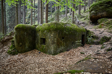 Bunker of World War II, Bunker in the woods